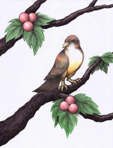 Bird on a Branch with Berries